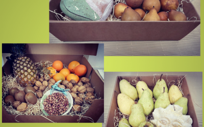NUOVE PROPOSTE Ceramic & fruits!